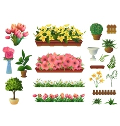 Plants and flowers set of elements vector image vector image