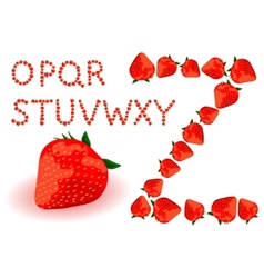 strawberries alphabet vector image vector image