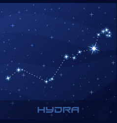 Constellation hydra water snake night star sky vector