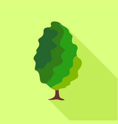 deciduous tree icon flat style vector image