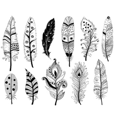 Hand drawn doodles ethnic feathers vector