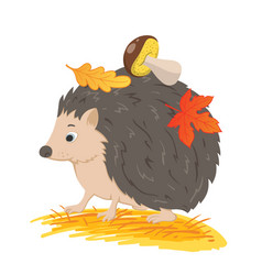 hedgehog with autumn leaves vector image