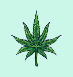 weed leaf marijuana vector image