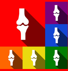 knee joint sign set of icons with flat vector image