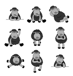 black sheep set vector image