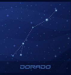Constellation dorado goldfish night star sky vector