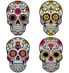 Day dead skull set vector