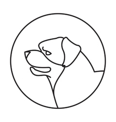 Dog head rottweiler in a linear style vector image