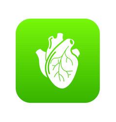 human heart organ icon green vector image