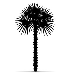 Palm tree silhouette 01 vector