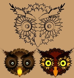 The heads of owls vector image