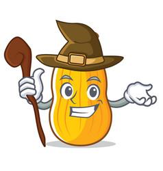 Witch butternut squash mascot cartoon vector