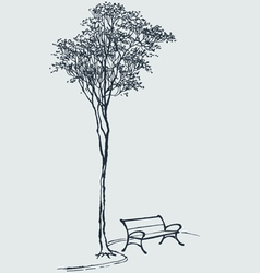 Bench in a park vector image vector image