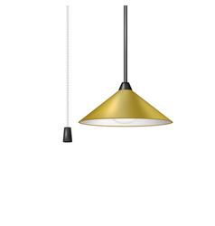 retro hanging lamp in brown design vector image vector image