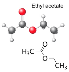 Formula and model of ethyl acetate molecule vector image vector image