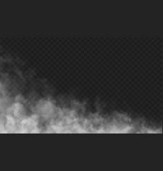 isolated transparent fog mist or smoke special vector image
