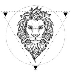 Ornate lion head over sacred geometry african vector