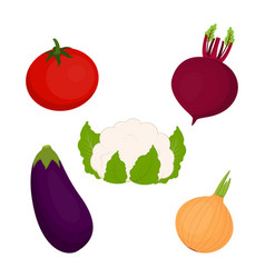 set with cauliflower and vegetables vector image