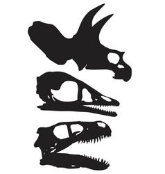 skulls dinosaur vector image