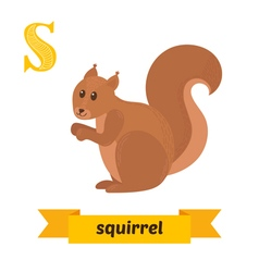 Squirrel S letter Cute children animal alphabet in vector