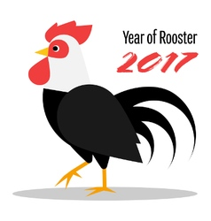 The year of rooster 2017 vector