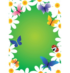 camomiles and butterflies vector frame vector image