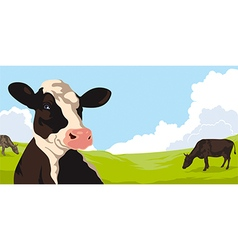 Cows with grass vector image