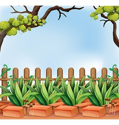 A backyard with a fence vector image