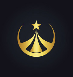 star round business gold logo vector image