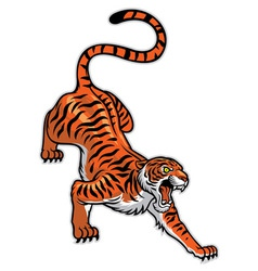 tiger in classic tattoo pose vector image vector image