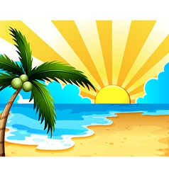 A beautiful beach with a coconut tree vector