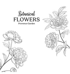 Botanical flowers garland vector