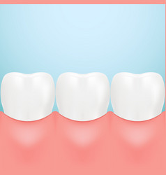 dental care tooth isolated on a background vector image