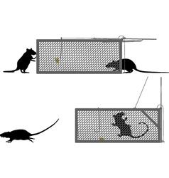 Humane rat trap vector image