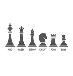Named chess piece icons set vector image