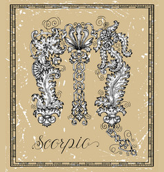 scorpio or scorpion zodiac sign on frame on textur vector image