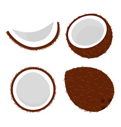 set with coconut vector image