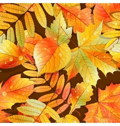 Swatch ready detailed seamless wet leaves vector image