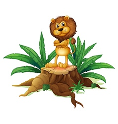 A lion standing above the wood vector image
