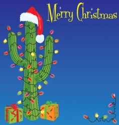 Christmas cactus background vector