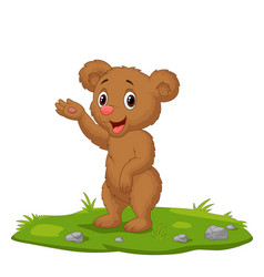 cute babear waving hand on grass vector image