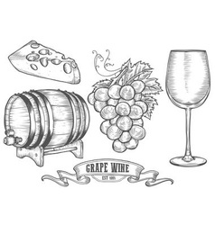 Hand Drawn Wine and Cheese Icon Drawings vector image