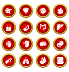 internal human organs icons set simple style vector image