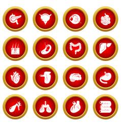 Internal human organs icons set simple style vector