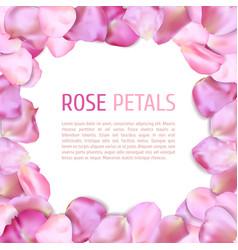 Rose petals frame vector