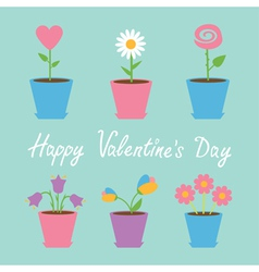 Set of six flowers in pots Blue Valentines day vector