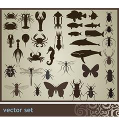 Set vector