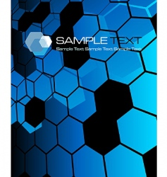 hexagon pattern vector image