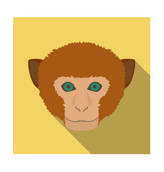 monkey icon in flat style isolated on white vector image