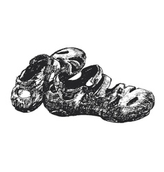 rubbr shoe vector image